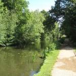 Walks with wheels alongside the Basingstoke Canal, Surrey