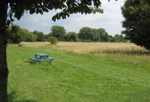 wheelchair walk  in Surrey