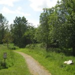 Fox Corner Community Nature Reserve