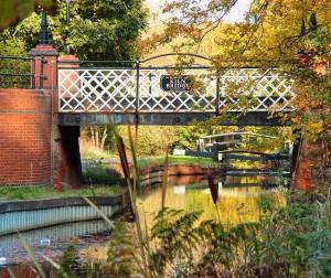 St Johns Lye, Woking, Wheelchair walk in Surrey