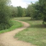 Arthur Jacob Nature Reserve path