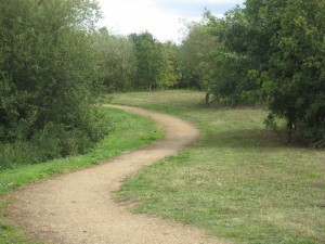 Arthur Jacob Nature Reserve path wheelchair walk